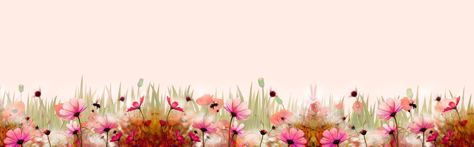 tranh hoa cỏ op bep